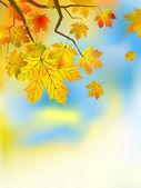 осенние листья фон в солнечный день. — Cтоковый вектор