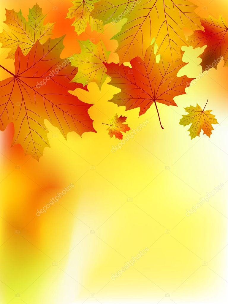 Fall yellow maple leaves. EPS 8 vector file included — Stock Vector #3885951