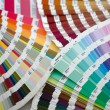 Royalty-Free Stock Photo: Color swatches