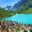 Altai 8 - Stock Photo