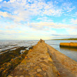 Old Pier in St Andrews - Stock Photo