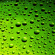 Many water drops - Stock Photo