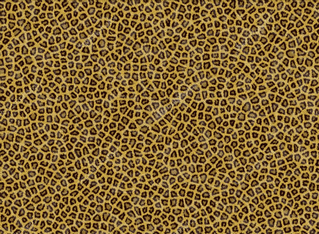 Animal Fur Texture — Stock Photo © bagiuiani #3742129