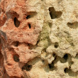 Stock Photo: Multicolored limestone
