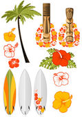 Atributos de resto hawaiano — Vector de stock