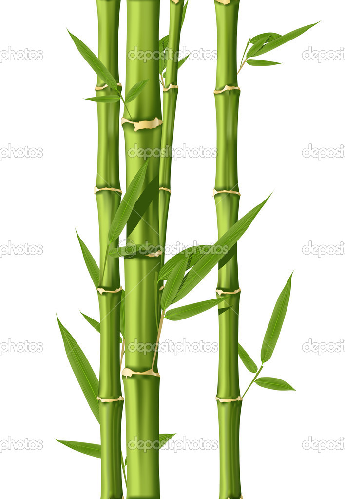bambou image vectorielle lumumba 3757008. Black Bedroom Furniture Sets. Home Design Ideas