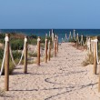 Beach entrance — Stock Photo #3746018
