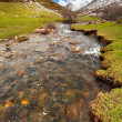 Thaw river — Stockfoto