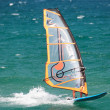 Windsurfer in the sea - Stock Photo