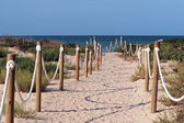 Beach entrance — Stockfoto