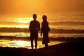 Looking the sea sunset — Stock Photo