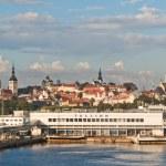 Kind from the sea on port Tallinn — Stock Photo #3778092