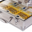 Stock Photo: Metallic case full of Euro
