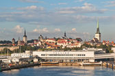 Kind from the sea on port Tallinn — Stock Photo
