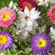 Bouquet of multi-coloured summer flowers — Stock Photo #3806898