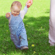 The first steps of the kid — Stock Photo