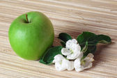Green apple and blossoming branch — Stock Photo