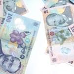 Romanian Money Mix — Stock Photo