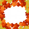 Autumn leaves — Stock Photo #3770071