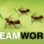 Team Work Spirit — Stock Photo #3772628