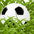 Stock Photo: Football Background