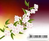 Blüten-abbildung — Stockfoto