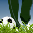 Royalty-Free Stock Imagen vectorial: Coach and football between grass