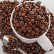 Coffee beans and cup — Stockfoto