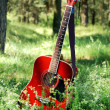 Acoustic guitar in the grass - Stock Photo