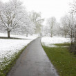 Winter path — Stock Photo #3816700