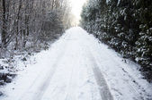 Snowy lane — Stock Photo