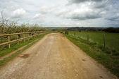 Country lane — Stock Photo