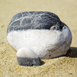 Stone on beach — Stock Photo #3782394