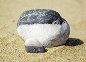 Stone on a beach — Stock Photo
