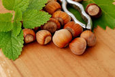 Hazelnuts with pincers — Stock Photo