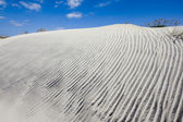 Dunes of Hatteras — Stock Photo