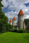 Medieval towers — Stock Photo