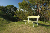 Empty bench — Stock Photo