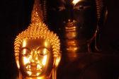 Buddha hlavy — Stock fotografie