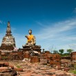 The Buddha and The pagoda at wat Maheyong, Ayutthaya — Stock Photo