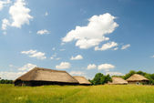 Traditional ukrainian village — Stock Photo