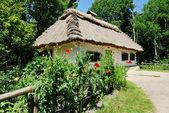 Traditional ukrainian village house — Stock Photo