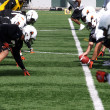 équipe de football des lions c.-b. — Photo