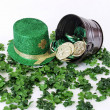 Foto de Stock  : Irish Bounty