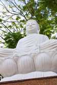 The Buddha Statue — Stock Photo