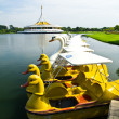 Duck and swboat — Stockfoto #3856713