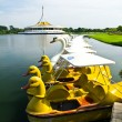 Stockfoto: Duck and swboat