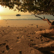 Phuket sunset - Stock Photo