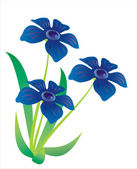 Three blue flowers — Stock Photo