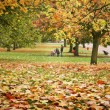 Autumn Park — Stock Photo #3917484